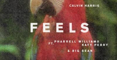 "Pharrell, Katy Perry, And Big Sean Team Up For Calvin Harris's ""Feels"""