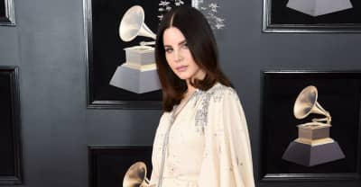 Lana Del Rey shares statement after police foil attempt to kidnap her