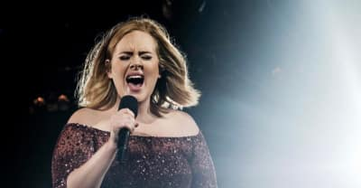 Adele Urged Fans To Donate Money To Grenfell Tower Residents During A London Show