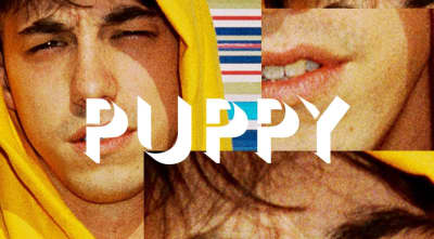 Brockhampton's Puppy is out in June.