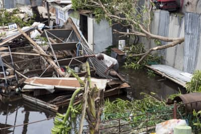 Here's where you can donate to relief efforts in Puerto Rico