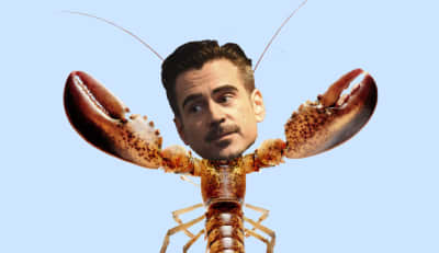 Colin Farrell Got Fat For A Movie Where He Maybe Turns Into A Lobster