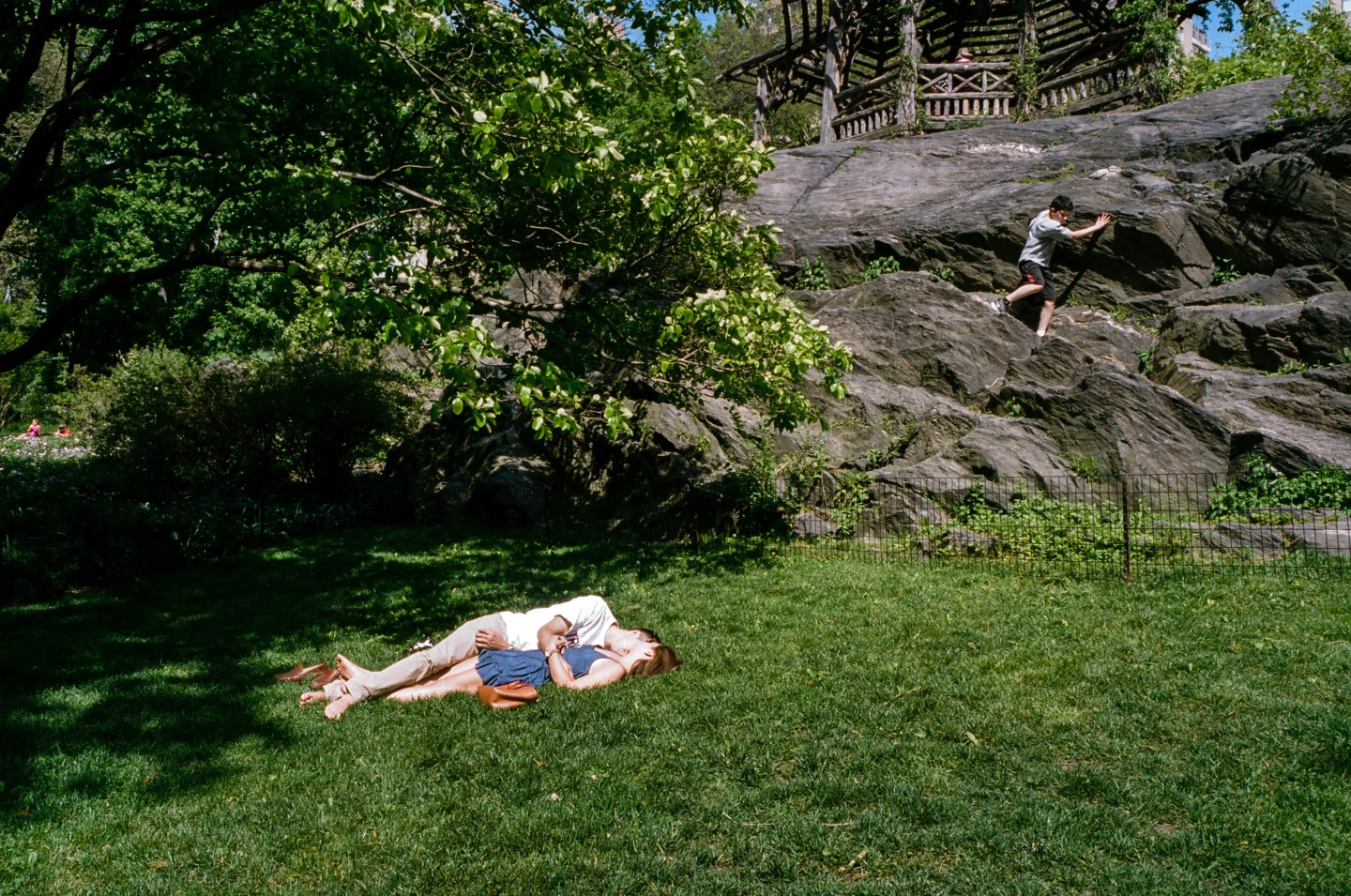 A Lurk At Summer In New York City's Parks
