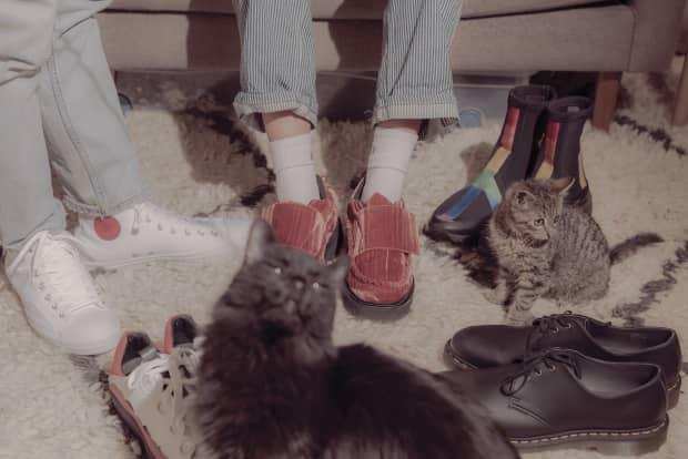Puss in vegan boots