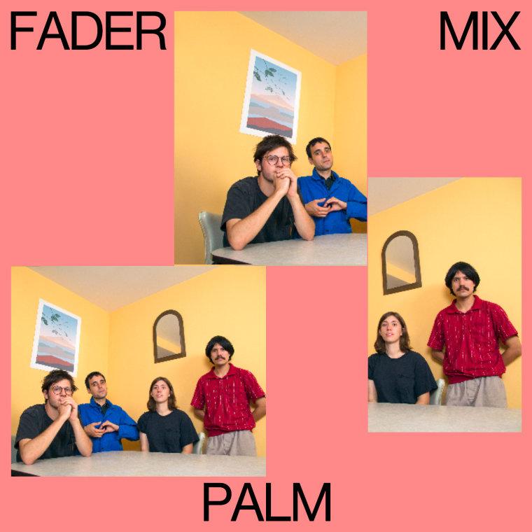 FADER Mix: Palm