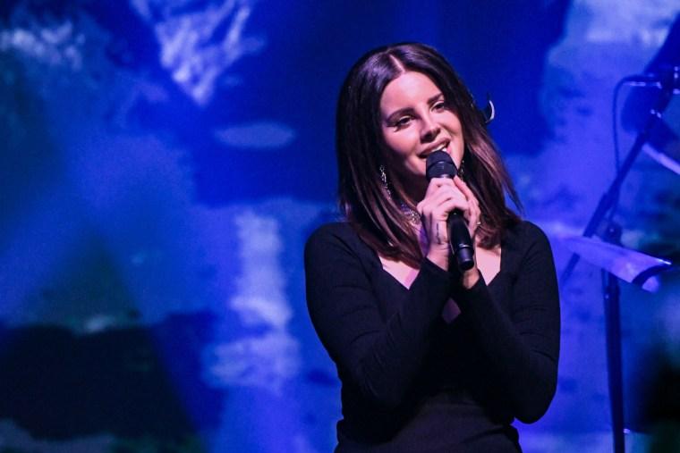 Lana Del Rey addressed her Radiohead lawsuit on stage last night