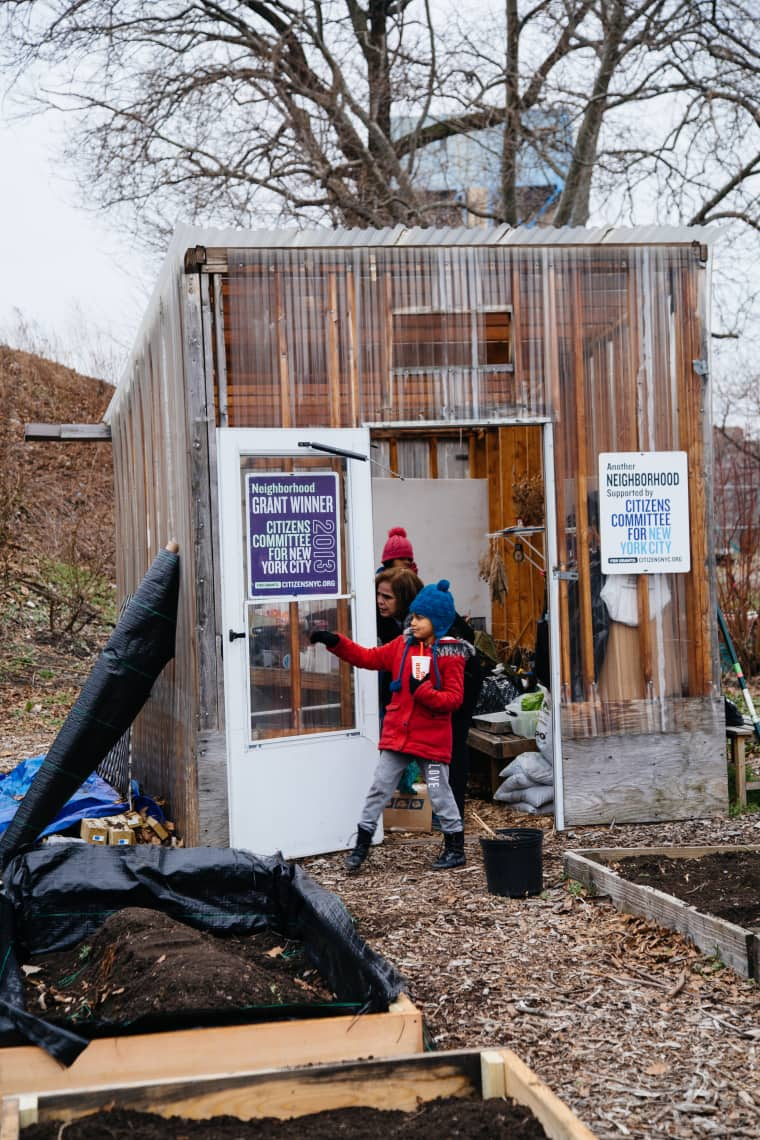 These New York Gardeners Are Fighting The System By Growing Food
