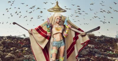 Die Antwoord Announce New Album MOUNT NINJI & DA NICE TIME KID