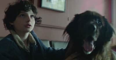 Stranger Things Star Finn Wolfhard Stars In The Heartbreaking New Pup Video