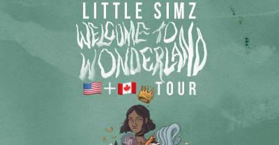 Little Simz Announces North American Tour In Support Of Her Stillness In Wonderland Album