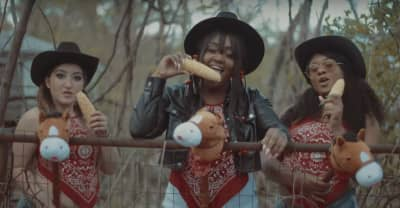 "CupcakKe's ""Old Town Road"" remix now has a suitably NSFW video"