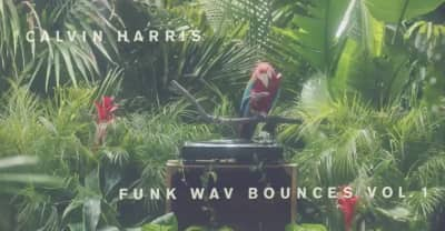 Watch A Parrot Play Snippets Of Every Song On Calvin Harris's Funk Wav Bounces Vol. 1 Album