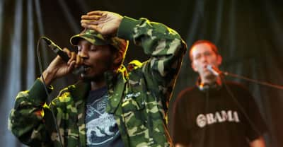 Del The Funky Homosapien falls off stage during set with Gorillaz in Denmark