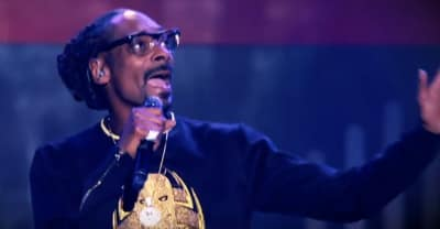 "Redemption of a Dogg, a ""Snoopsical"" starring Snoop Dogg, is coming to a stage near you"