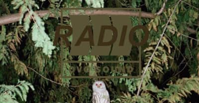 Listen To Episode 34 Of OVO Sound Radio