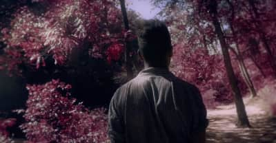 """Danger Lurks At The Heart Of GAIKA's Idyllic """"Glad We Found It"""" Video"""