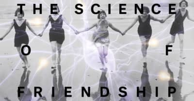 Why We Need Friends, According To A Scientist