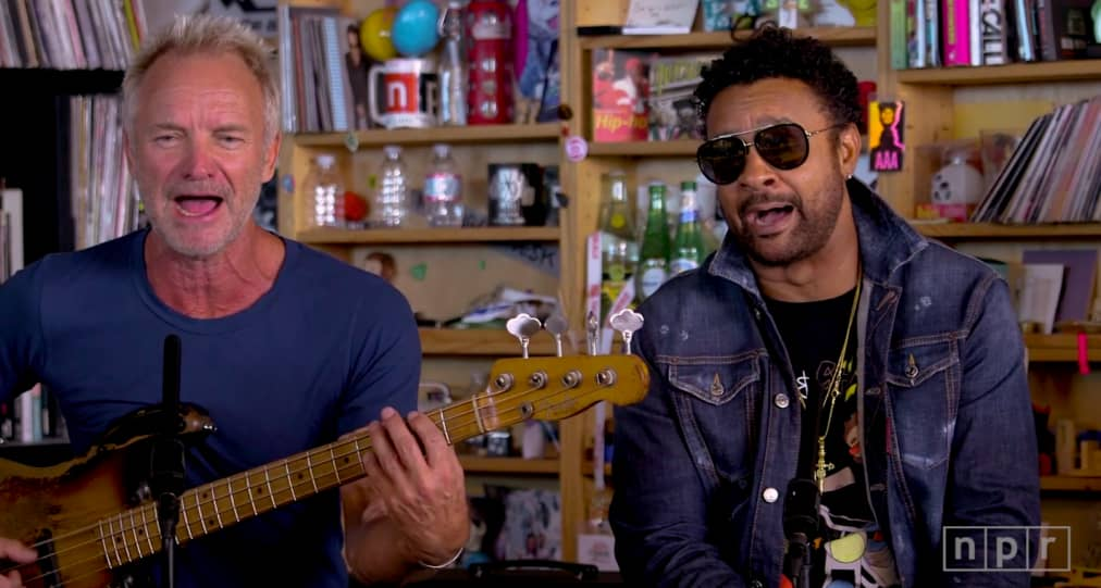 Sting and Shaggy just did a Tiny Desk Concert | The FADER