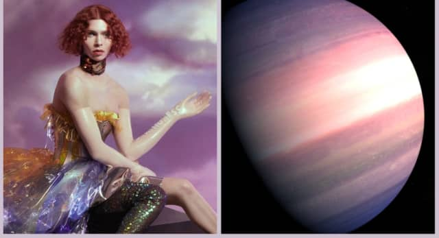 Fans petition NASA to name planet TOI-1338 b in SOPHIE's memory 1