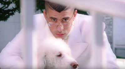 "Watch Bad Bunny's new ""Si Estuviésemos Juntos"" music video"