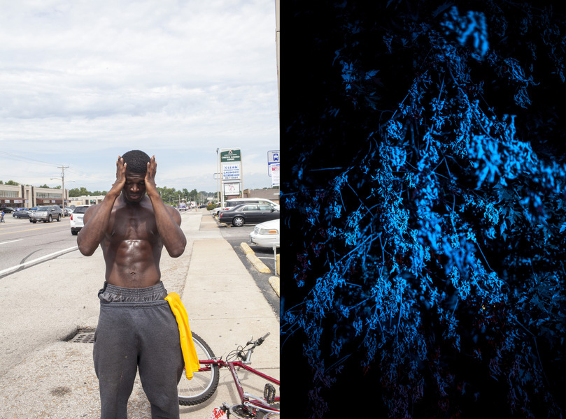 18 Photographers Capturing Every Hidden Corner Of America