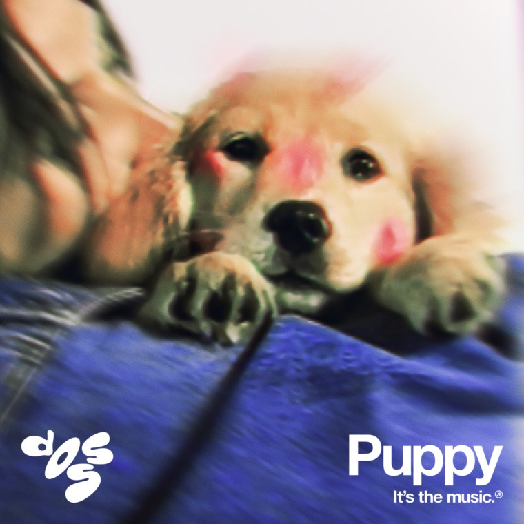 "Doss is back with a new single, ""Puppy"""