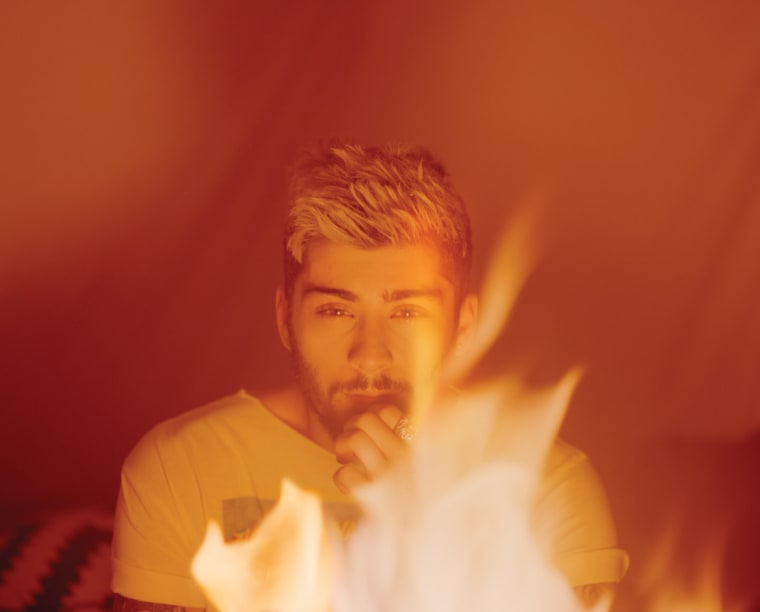 14 Things We Learned From Zayn Malik's The FADER Cover Story