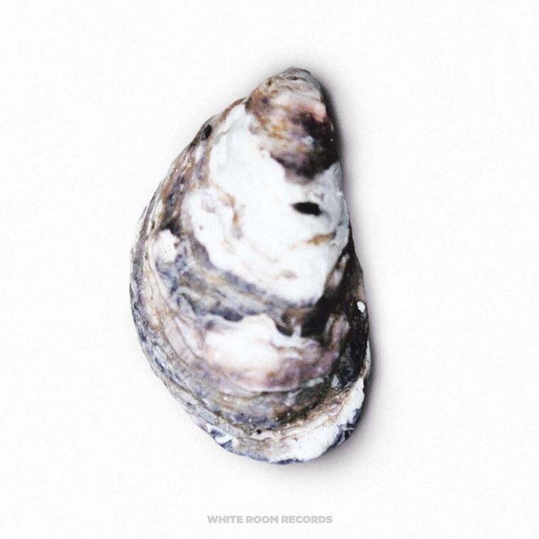 Hear <I>Closer</i>, JMSN's New Album As Pearl