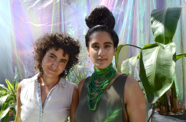 "Raw Silk Debuts ""Malpresentations,"" An Exquisite Sitar And Cello Duet"