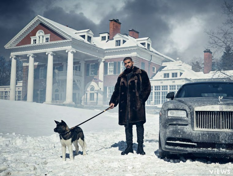 Meet Diamond, Drake's New Dog