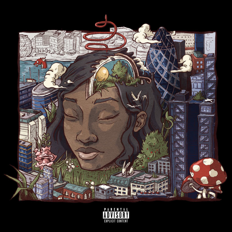 Listen To Little Simz's <I>Stillness In Wonderland</i>
