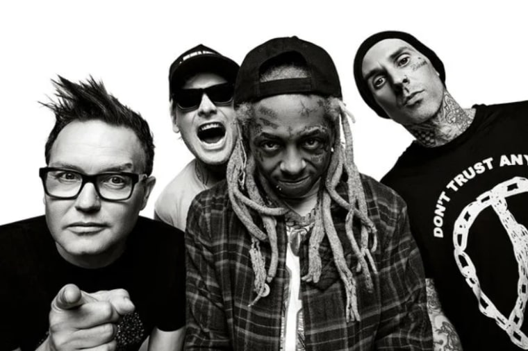 Lil Wayne cancels on blink-182 Tampa tour stop